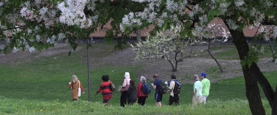 Photo of a group of people walking around Northeastern's campus with trees in bloom.