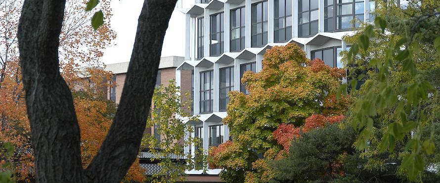 Trees in autumn color in the foreground partially obscure the Sachs Building in the background
