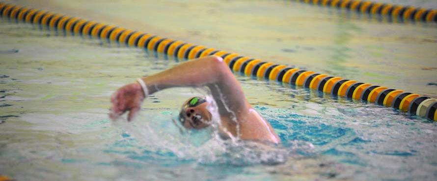A swimmer in the pool.