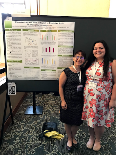 Biology major Debbie Onofrei and Assistant Professor of Biology Elyse Bolterstein smile as they stand in front of Onofrei's poster presentation.