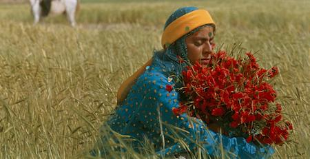 "A still from the film ""Gabbeh"" showing a woman holding red flowers sitting in a field of tall grass"