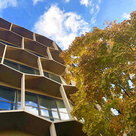 The Sach Building as seen from below with trees in autumn color in the foreground