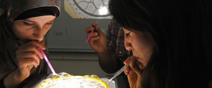 Students use bubbles to study math during a Nov. 13 class.