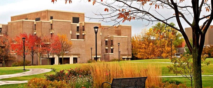 NEIU Campus during the fall