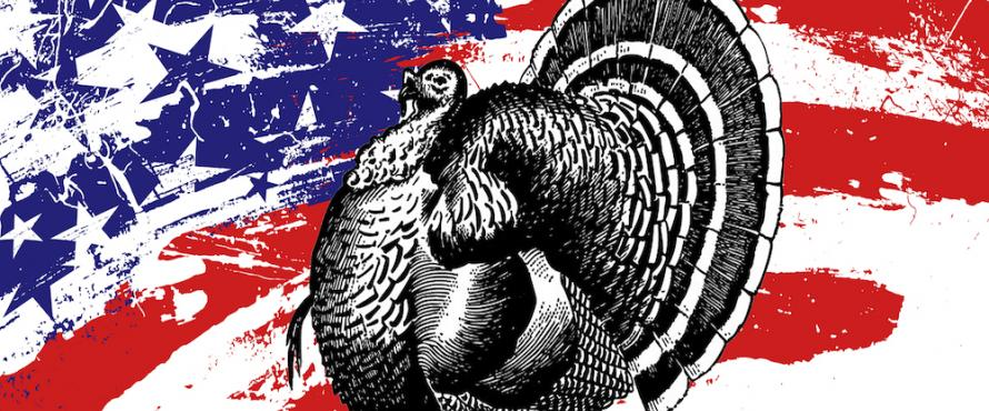 Promotional image for November with a turkey against a red white and blue background