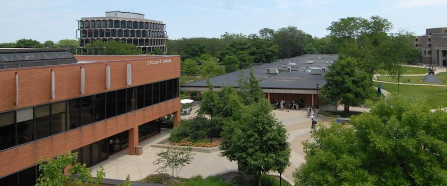 Northeastern Illinois University Commons