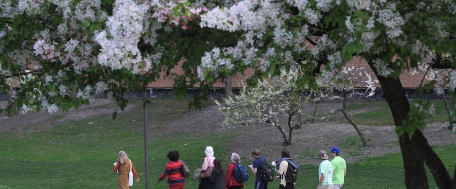 Students walk across the Main Campus during Arbor Day festivities.