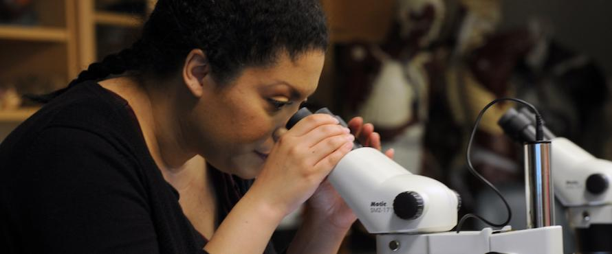 Economics graduate Rut Ortiz look uses a microscope in the lab