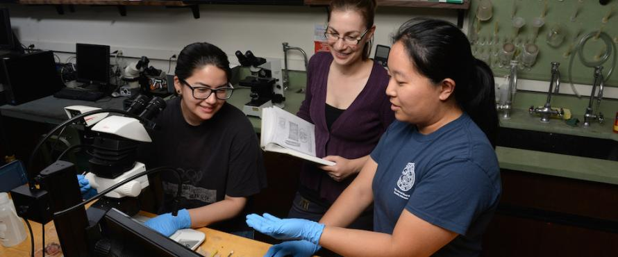 Jennifer Kawaguchi (left) and Olivia Choi (right) work with Assistant Professor of Biology Sarah Orlofske.