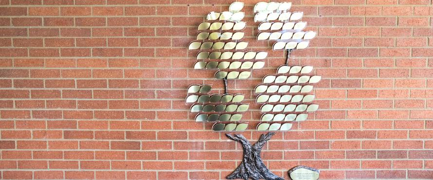 Photo of Northeastern's Memorial Tree with gold leaves against a brick wall in the Reading Room