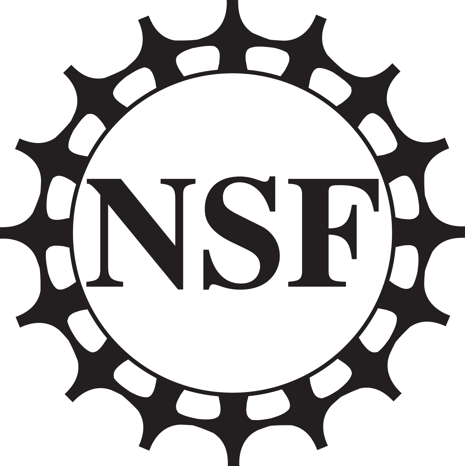The National Science Foundation logo with the letters N S F inside a circle